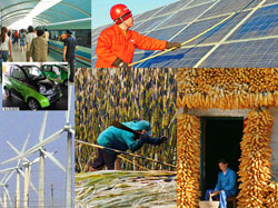 There is no shortage of options for investing in Chinese green energy.